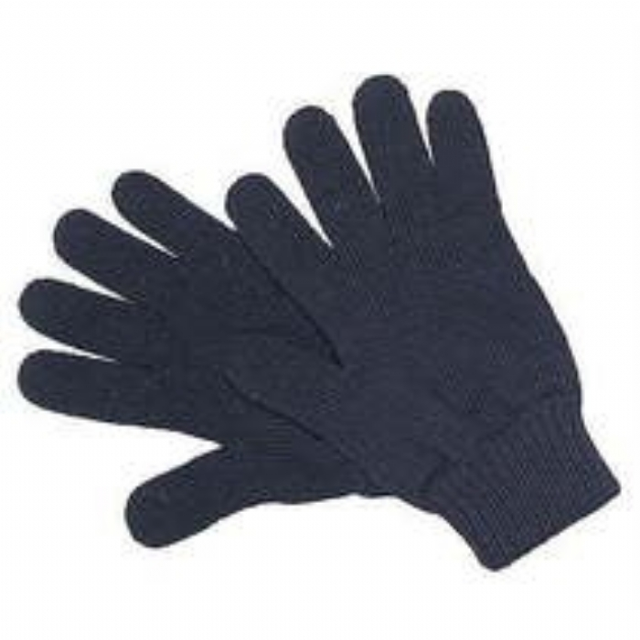 Endurance Thermal Gloves