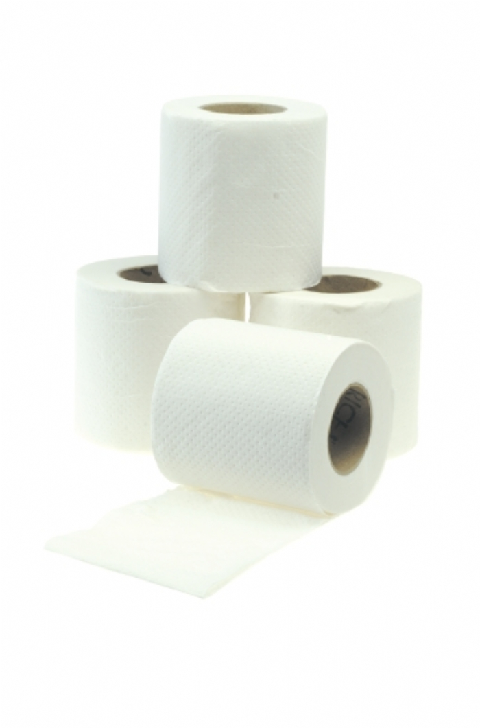 PTP320 Toilet Tissue Rolls - 320 sheets