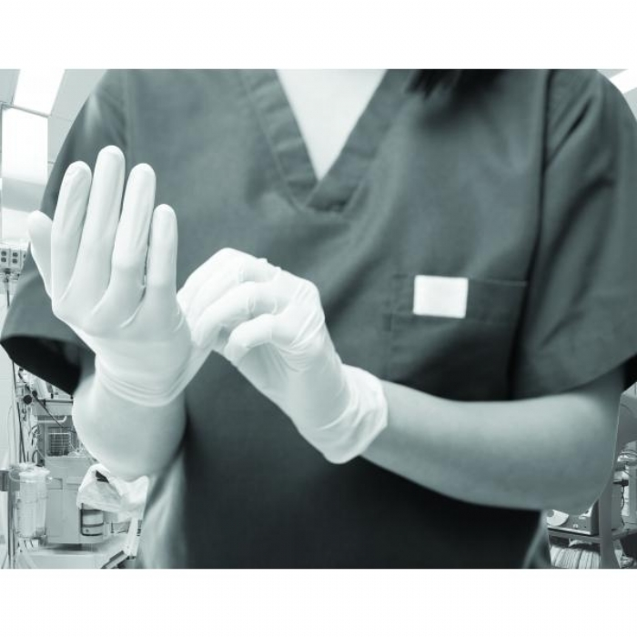 GN661 Powder Free White Stretch Vinyl Gloves