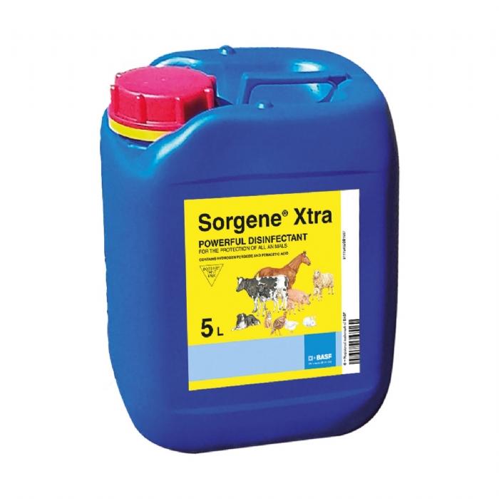 Sorgene Xtra - Disinfectant